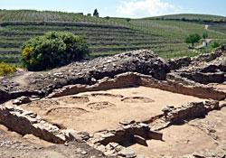 Etapas da História do Vinho no Douro
